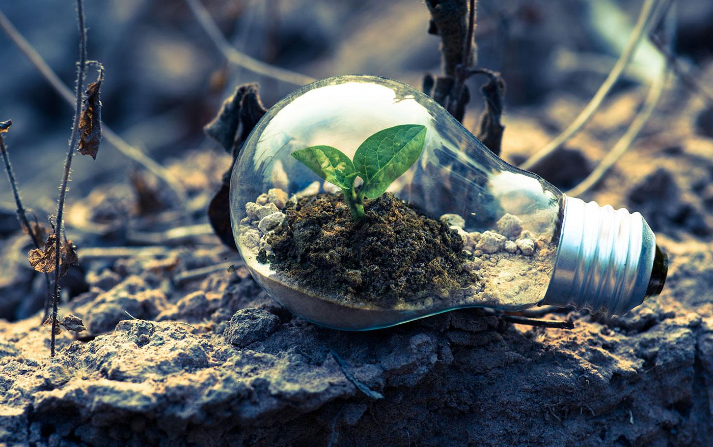 Op på de bæredygtige mærker | Find rundt i certificeringerne