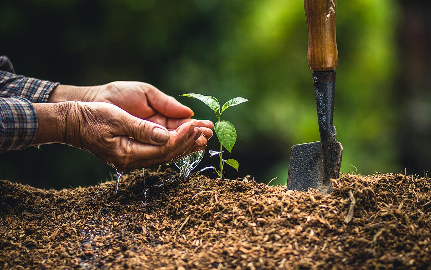 Bæredygtige materialer i Tentree-produkterne