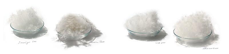 Dun eller fiber