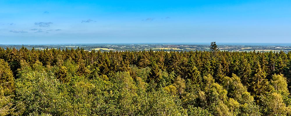 Toppen af Bornholm