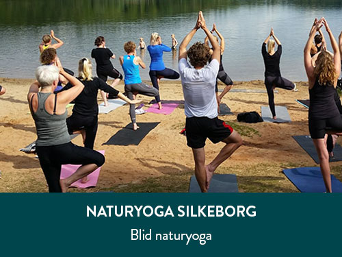 aktivitet-natur-yoga_500x375px