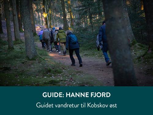 guidet-vandretur_500x375px